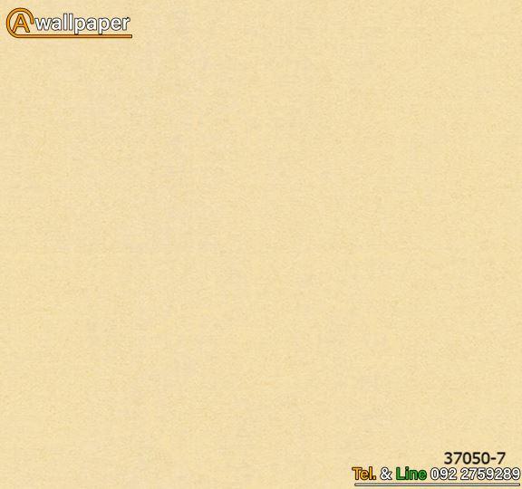 Wallpaper_Versace IV_37050-7