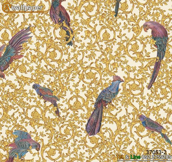 Wallpaper_Versace IV_37053-2