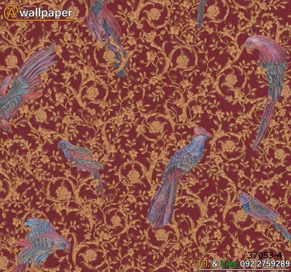 Wallpaper_Versace IV_37053-4