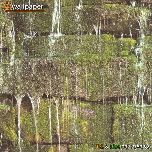 Wallpaper_B.B.Home Passion VI_861303