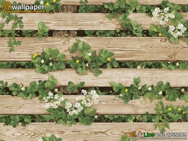 Wallpaper_Natunal2_87020-2