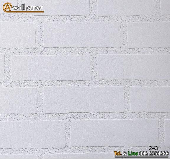 Wallpaper_Pro3_243