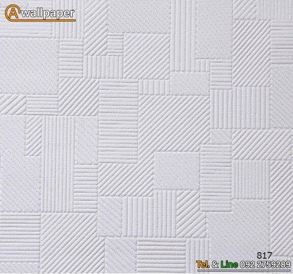 Wallpaper_Pro3_817
